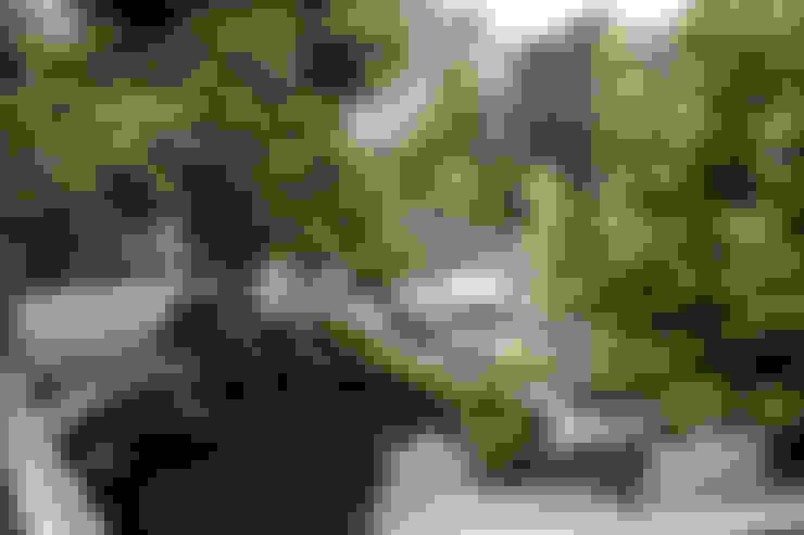 Сады в . Автор – Biesot