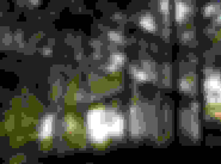 Linker zijgevel:  Huizen door Thijssen Verheijden Architecture & Management
