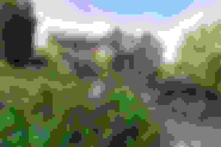Barnes Walker Ltd:  tarz Bahçe