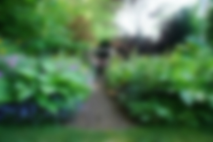 Garden  by Anna Paghera s.r.l. - Green Design