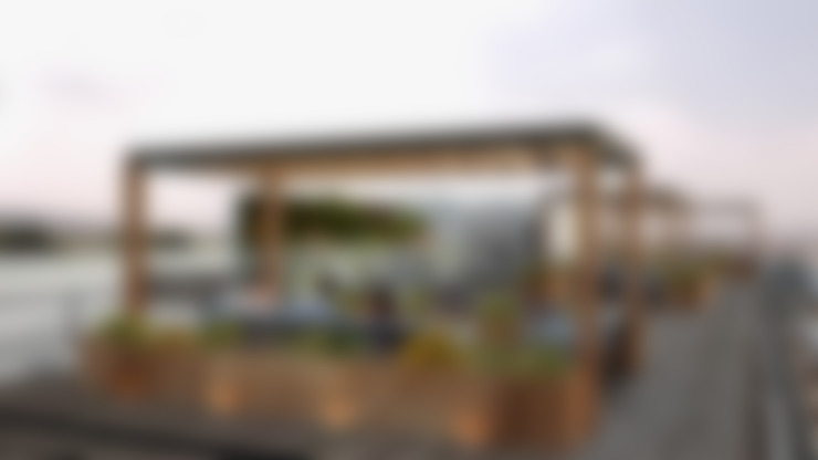 Roof garden: Jardines de estilo  por OK ARQUITECTURA