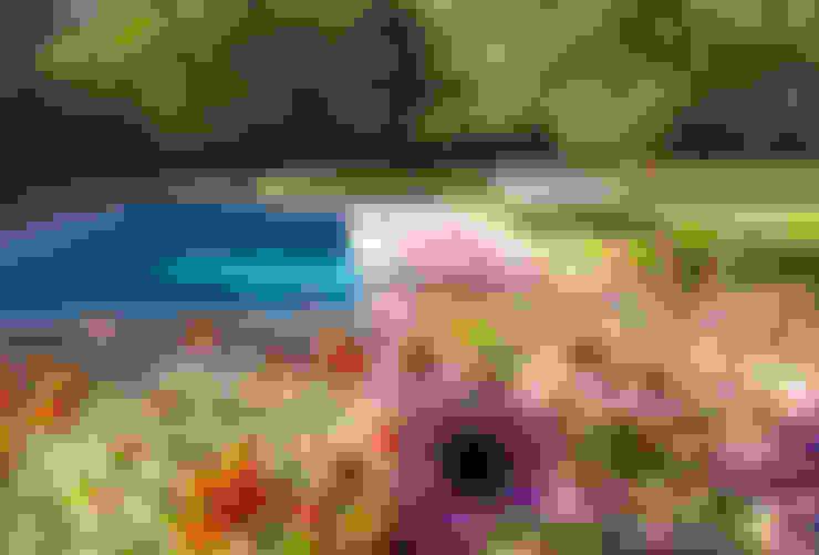 Jardines de estilo  por Paul Dracott Garden Design