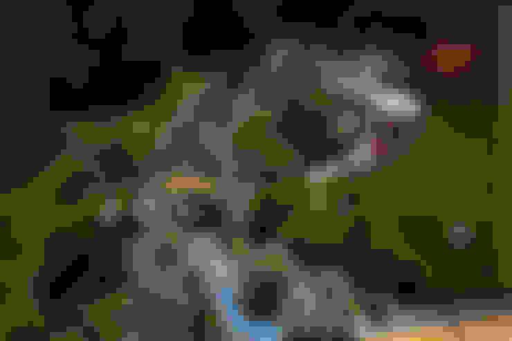 حديقة تنفيذ Мастерская ландшафта Дмитрия Бородавкина