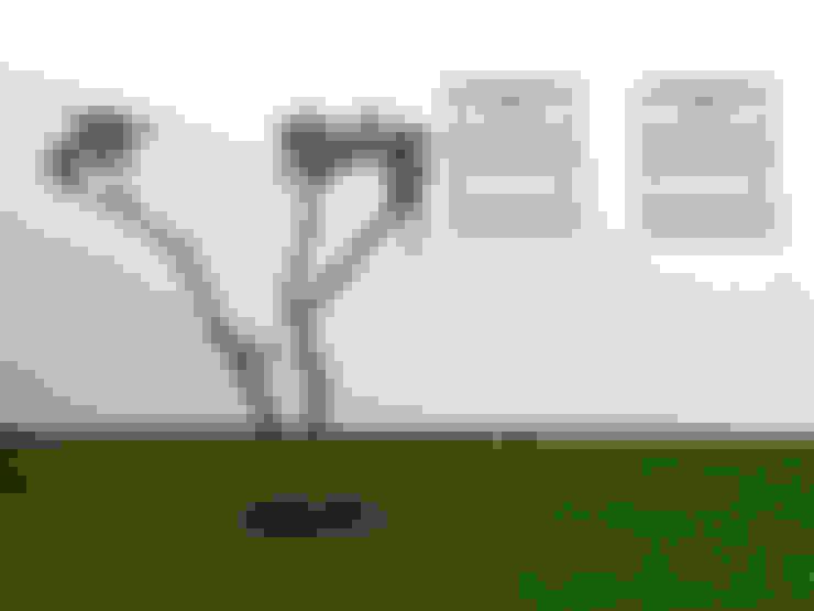 Casa de Sá: Jardins  por Sónia Cruz - Arquitectura