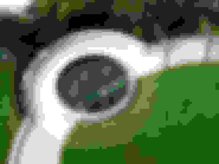 庭院 by Bowles & Wyer