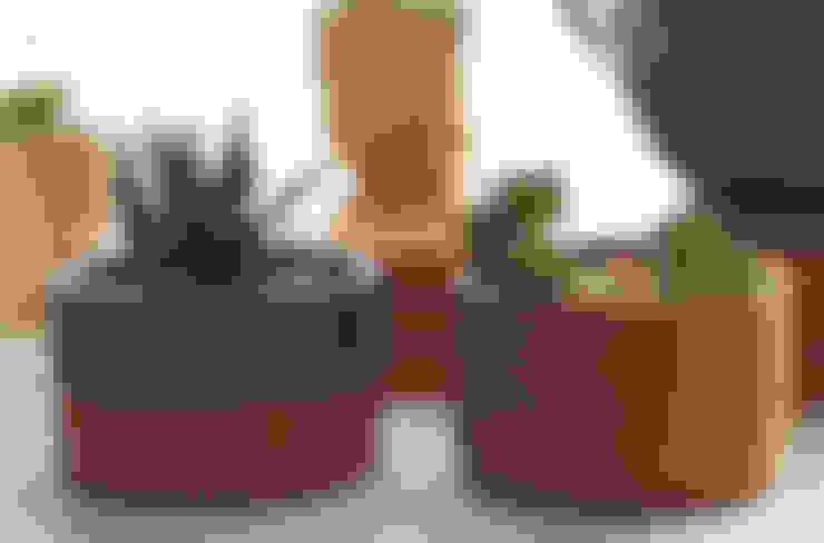 Suculentas en maceta de cartón: Hogar de estilo  por Kentia Decosustentable
