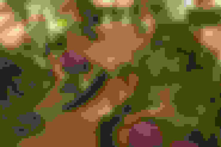 Jardines de estilo  de BAMBU CARBONO ZERO