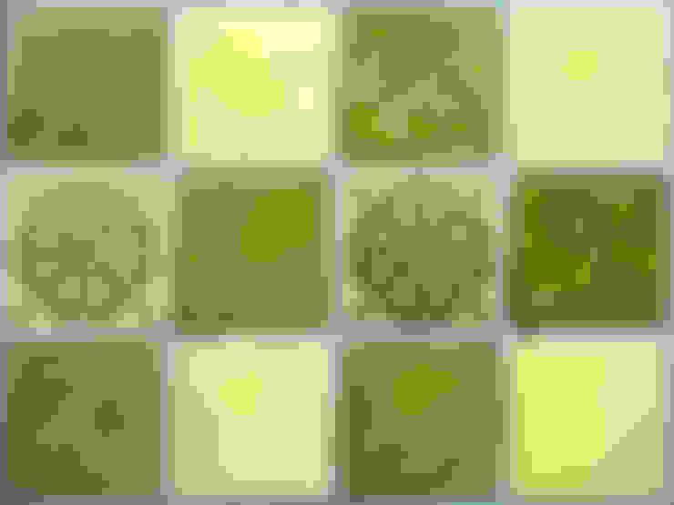 Walls & flooring by Deiniol Williams Ceramics
