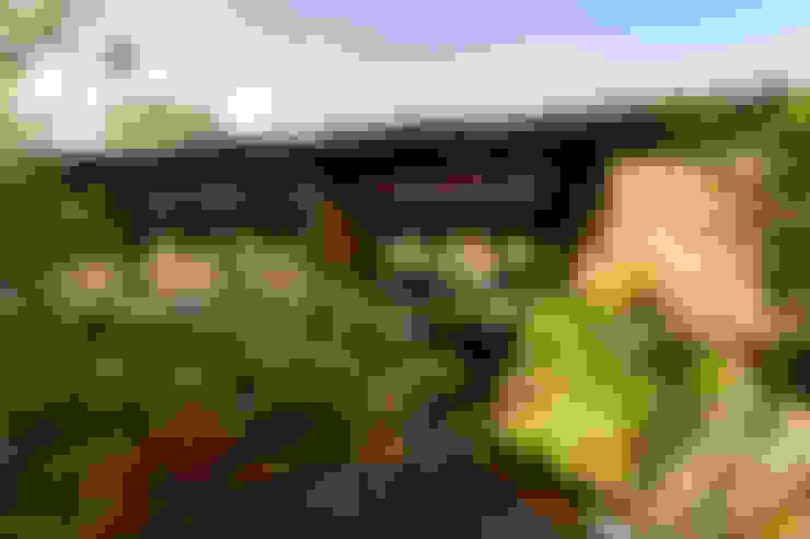 Cascada de Oxigenación / Isla Pino - Encino: Jardines de estilo  por TAAR / TALLER DE ARQUITECTURA DE ALTO RENDIMIENTO