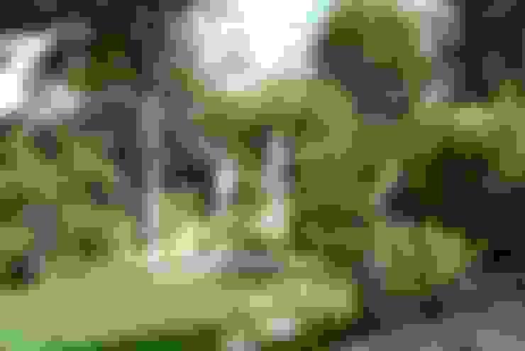 Jardins  por Benji Paysage