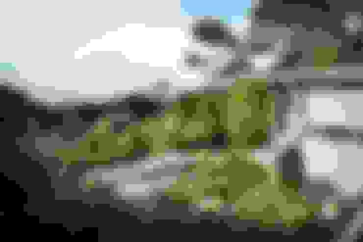 حديقة تنفيذ Ecologic City Garden - Paul Marie Creation