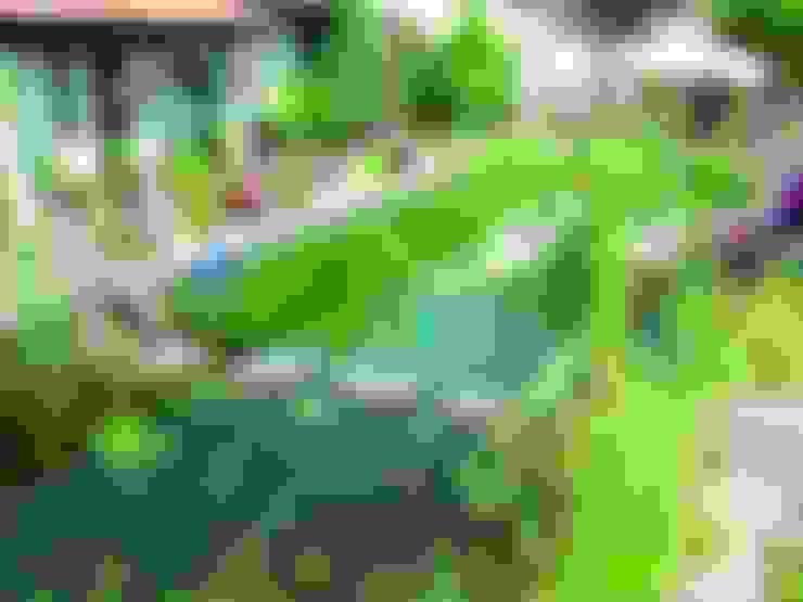 Piscines  de style  par Bio Göl Havuz (Biyolojik Gölet ve Havuz Yapısalları)