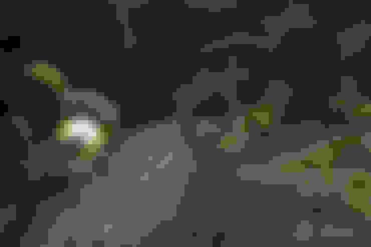 Сады в . Автор – dirlenbach - garten mit stil