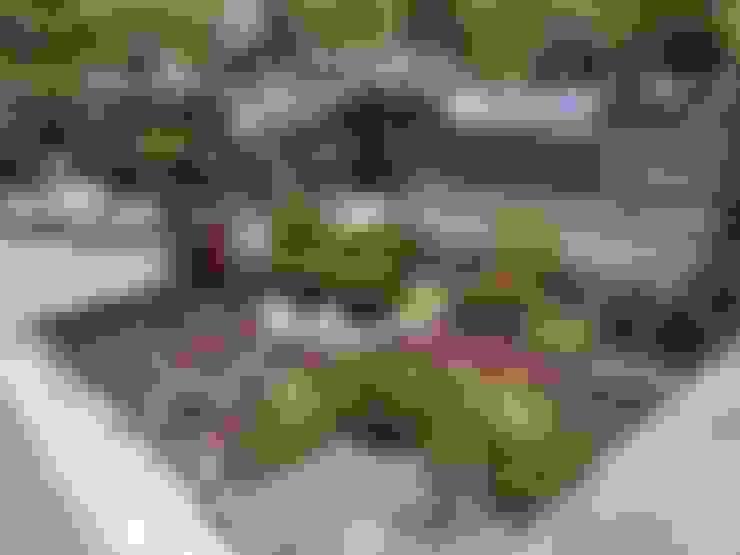 Garden by abelia peyzaj