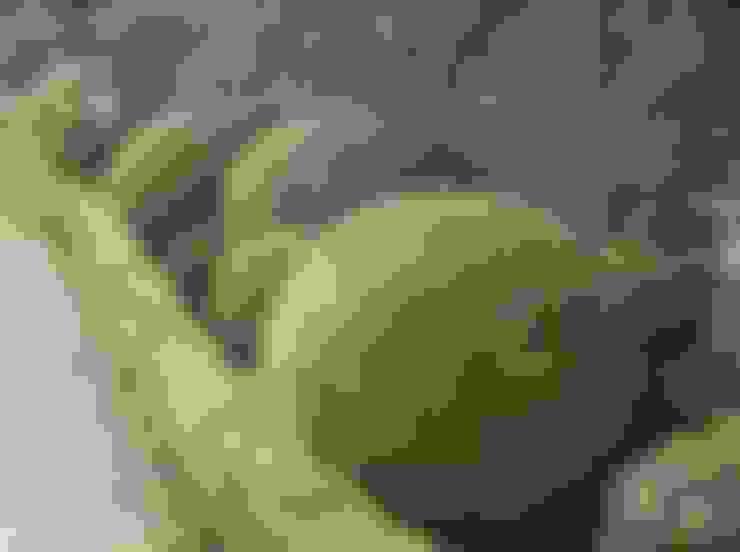 Giardino in stile  di Charlesworth Design