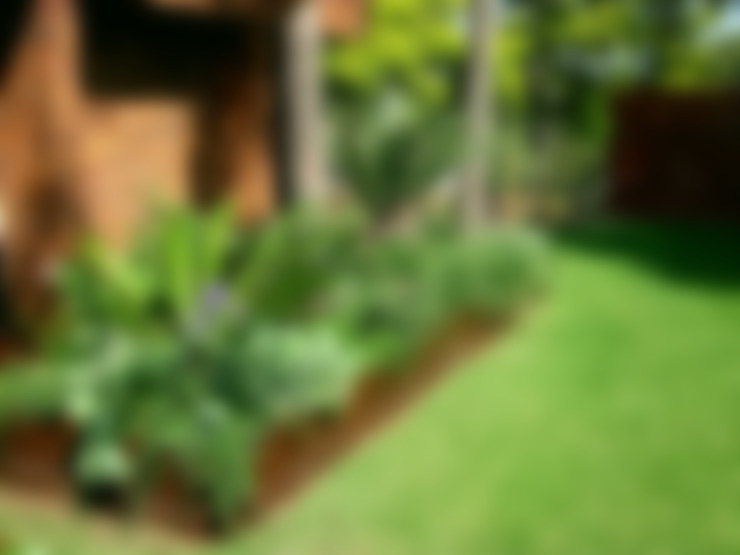 Large Family Garden:  Garden by Young Landscape Design Studio