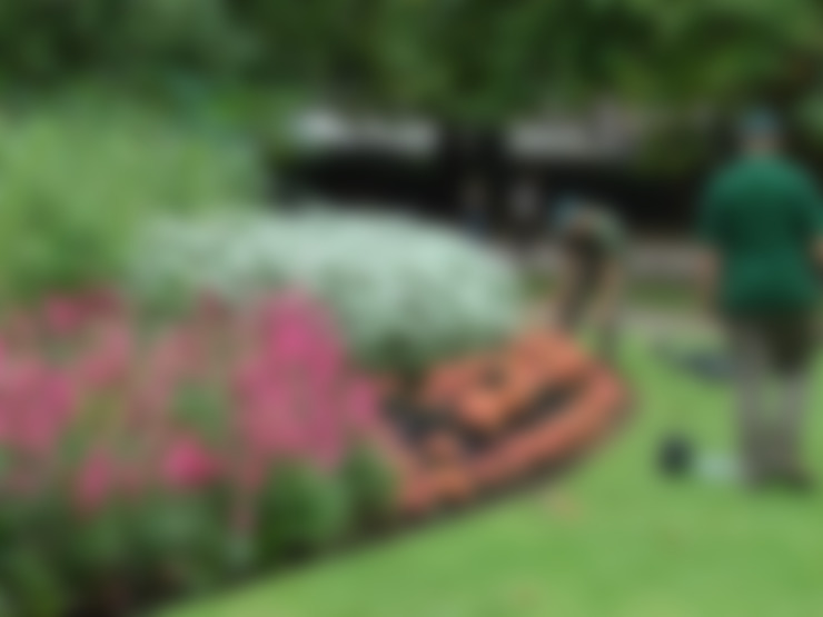 Jardines de estilo  por Jardinería Agrotofran S.L.