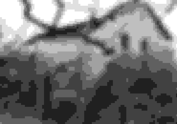 Casa sobre Ruína: Casas unifamilares  por Eurico Soares Teixeira Arquiteto - Unipessoal, Lda