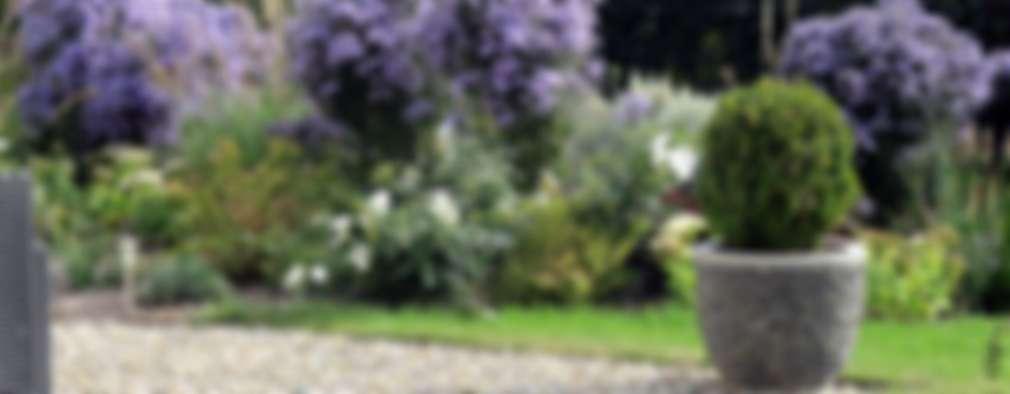 حديقة تنفيذ SCHAEDELE PAYSAGISTE