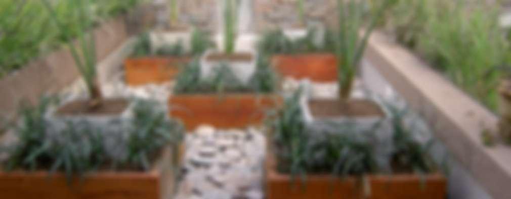 حديقة تنفيذ BAIRES GREEN MUEBLES
