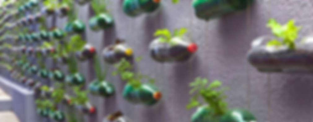20 idee fai da te economiche per un giardino spettacolare for Giardini fai da te foto