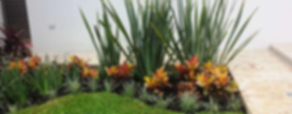 Giardino In Stile In Stile Moderno Di EcoEntorno Paisajismo Urbano