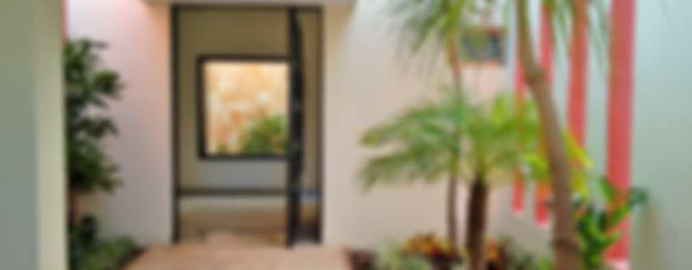 Jardines en vestíbulo de acceso - proceso:  de estilo  por EcoEntorno Paisajismo Urbano