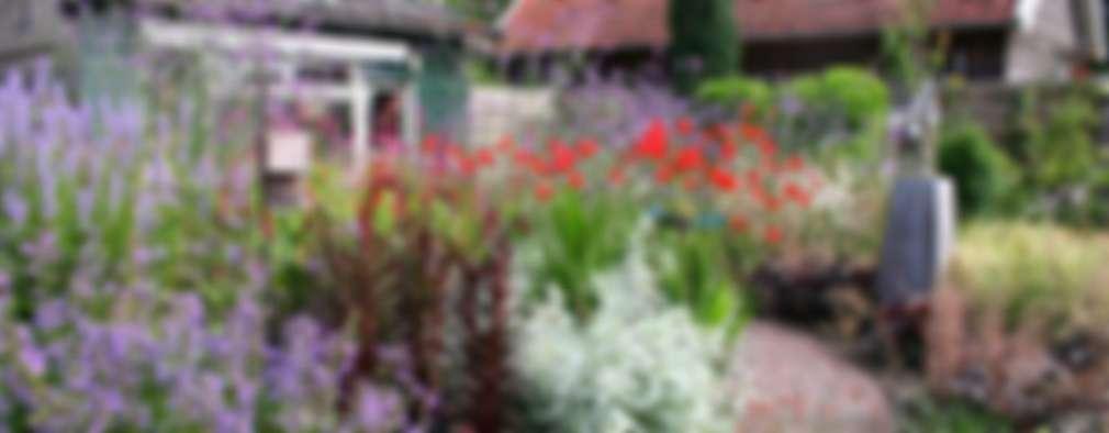 Jardin de style de stile Rural par Carla Wilhelm