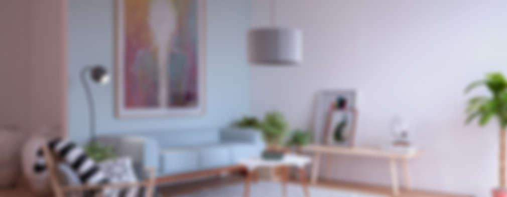 scandinavian Living room by ERC