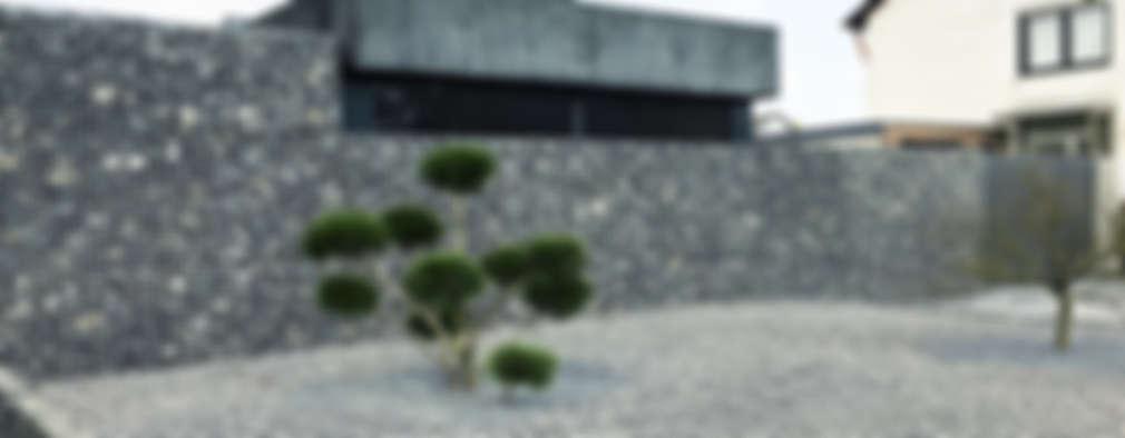 modern Garage/shed by ZHAC / Zweering Helmus Architektur+Consulting