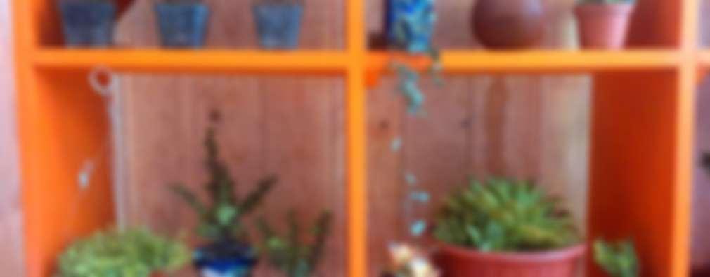 Decorar con suculentas y cactus ideas para exterior e for Cactus cuidados exterior