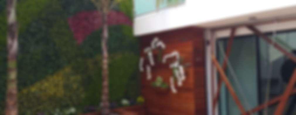 Muro verde:  de estilo  por Stann Designs S.A de C.V.