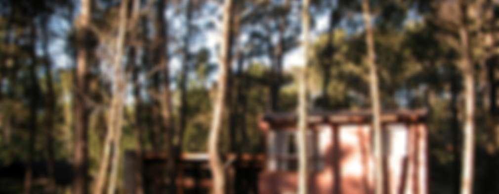 CASA EN EL BOSQUE: Casas de estilo rústico por LLACAY arquitectos