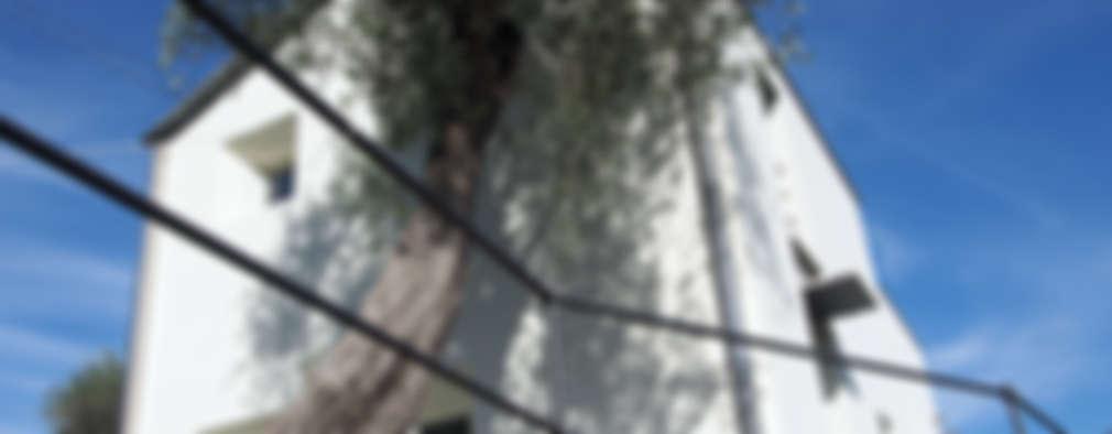 Camerette Per Bambini Genova E Provincia : Un locale agricolo si trasforma in casa moderna santa