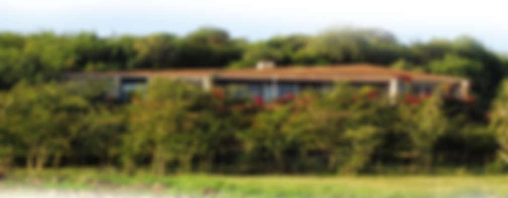 Insertion paysage: Maisons de style de style Minimaliste par TAG