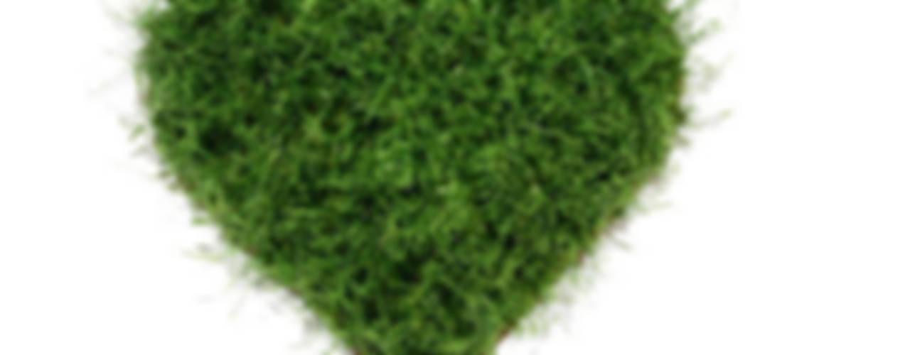 Wandbilder und Formen aus Gras von Grassland
