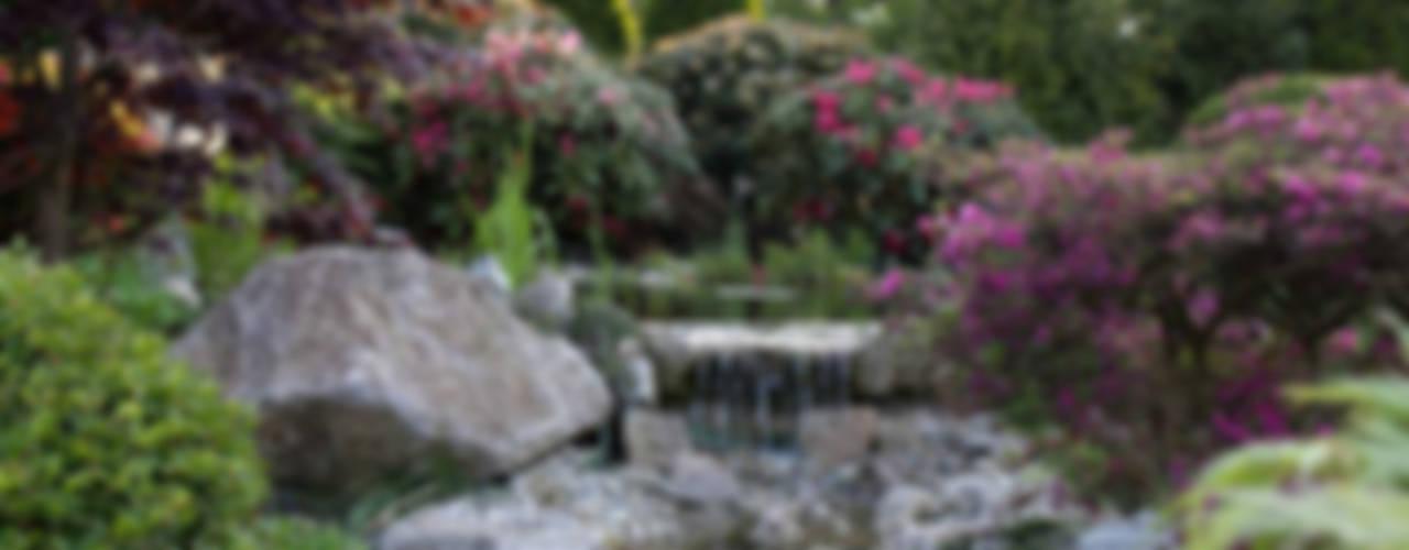 Bachläufe Moderner Garten von Kirchner Garten & Teich GmbH Modern