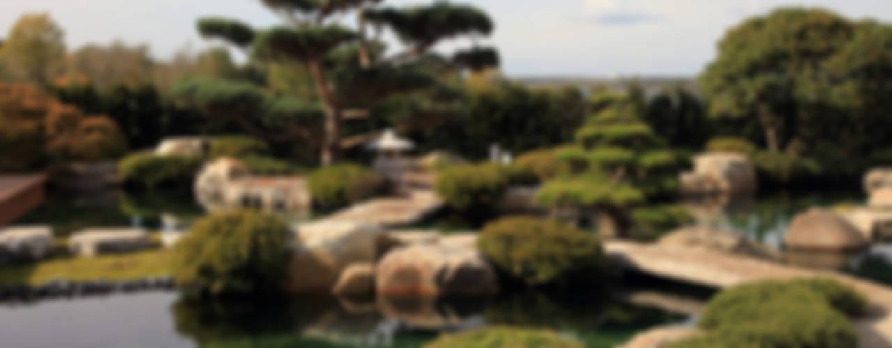 Projekty,  Ogród zaprojektowane przez Kirchner Garten & Teich GmbH, Azjatycki