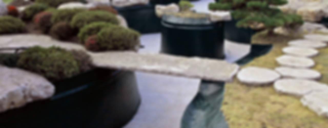 Jardin asiatique par Kirchner Garten & Teich GmbH Asiatique