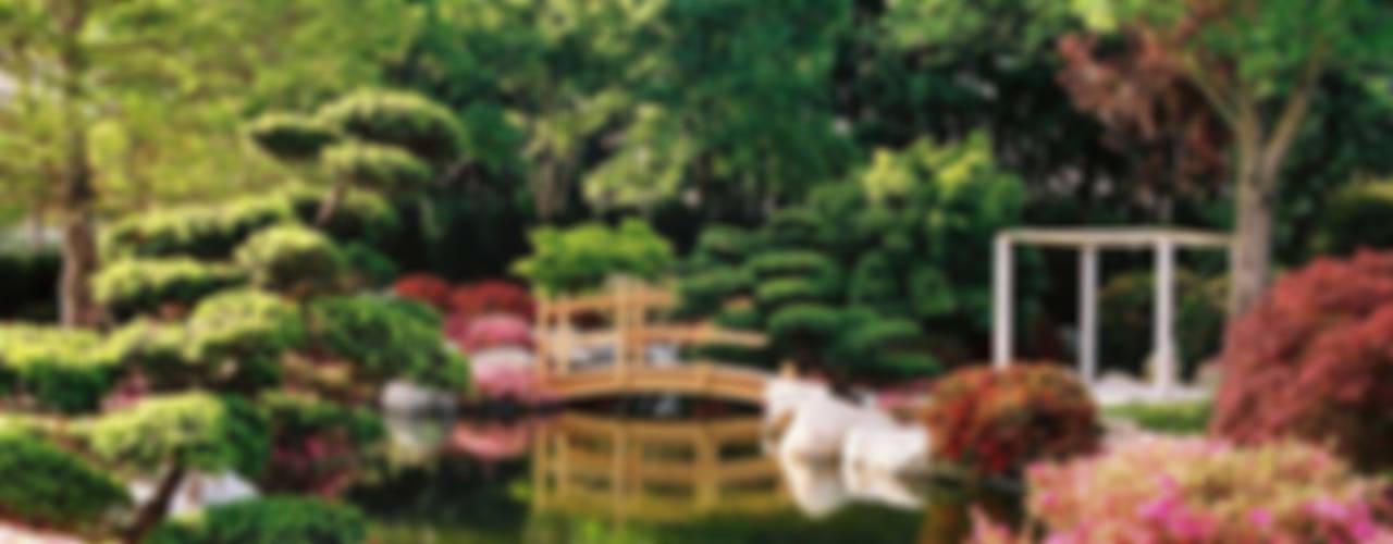 Nowoczesny ogród od Kirchner Garten & Teich GmbH Nowoczesny
