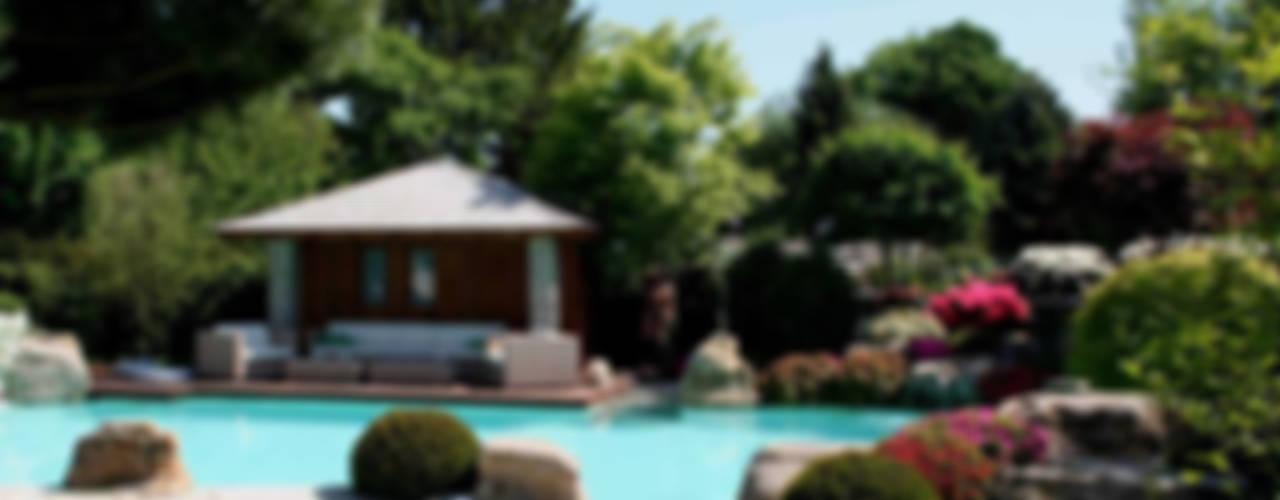 Natural-Pool in Braunschweig Moderner Garten von Kirchner Garten & Teich GmbH Modern