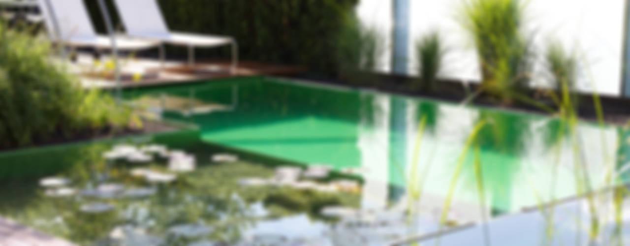 Balena GmbH Садовий басейн