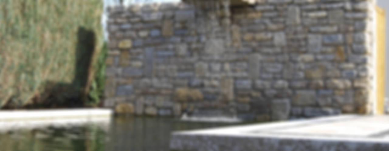 Die 10 Sensationellsten Steingarten Bilder