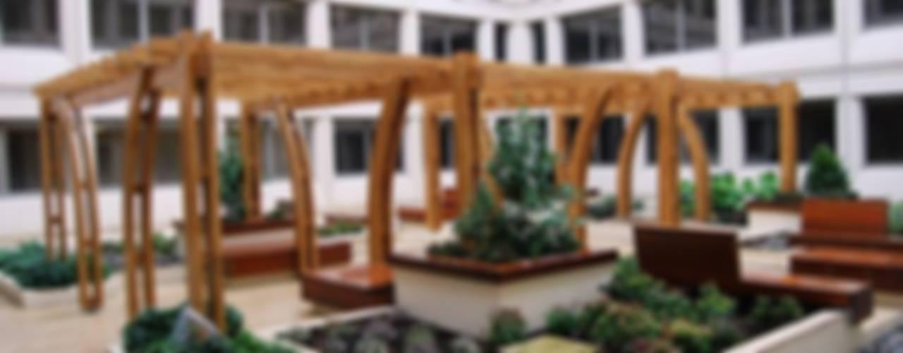 Our Work Giardino di EcoCurves - Bespoke Glulam Timber Arches