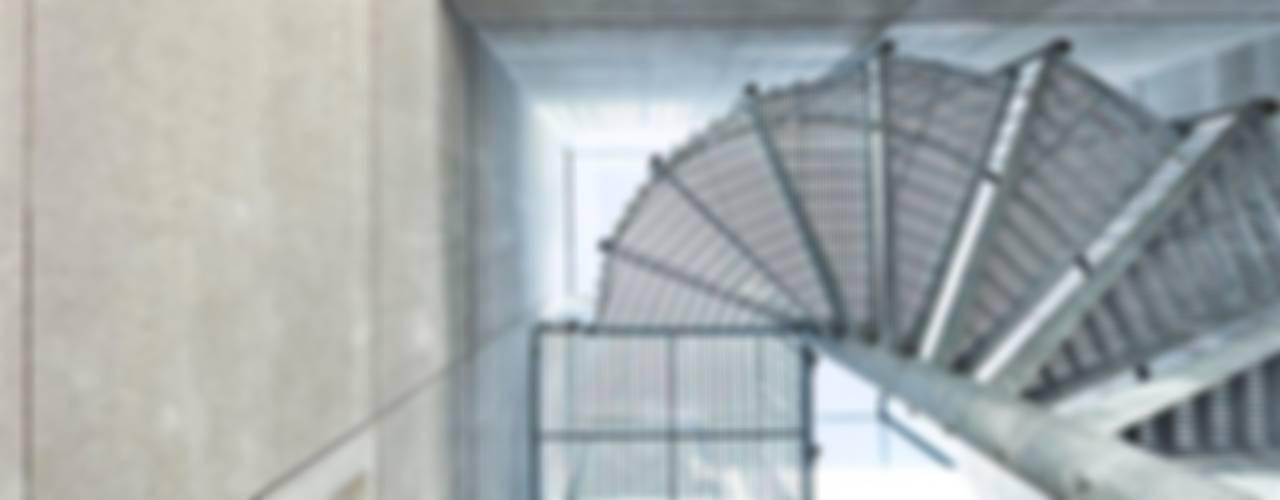 Corredores e halls de entrada  por AR Design Studio, Moderno