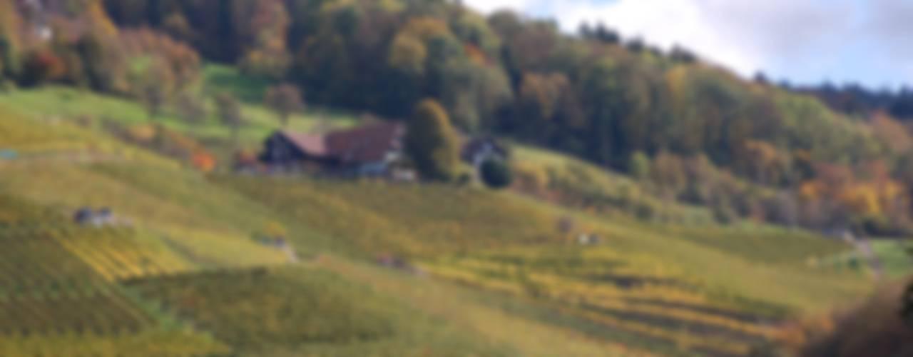 Casas de estilo ecléctico de Schlafen im Weinfass Ecléctico