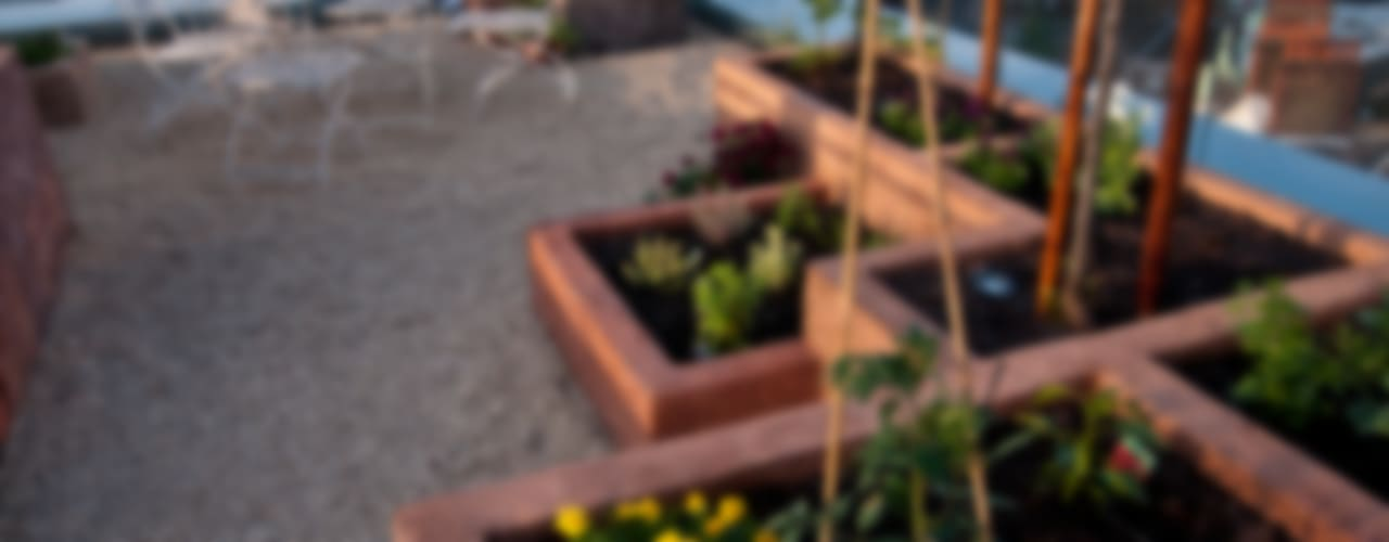 Urban Roof Gardens의  베란다