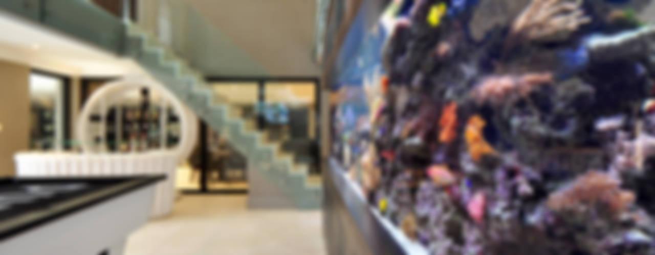 Footballer's Pad Aquarium Modern Oturma Odası Aquarium Architecture Modern