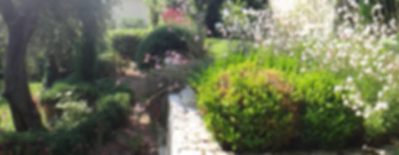Paysagiste Saint Jean Cap Ferrat Nelumbo Jardin méditerranéen