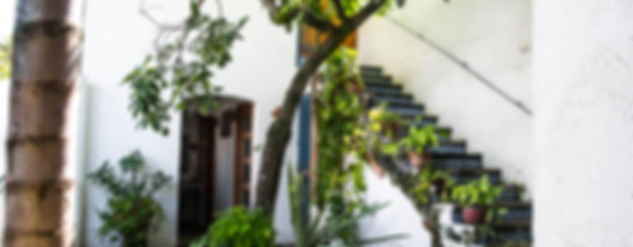 Casa de descanso en Chapala: Jardines de estilo  por Mikkael Kreis Architects , Ecléctico
